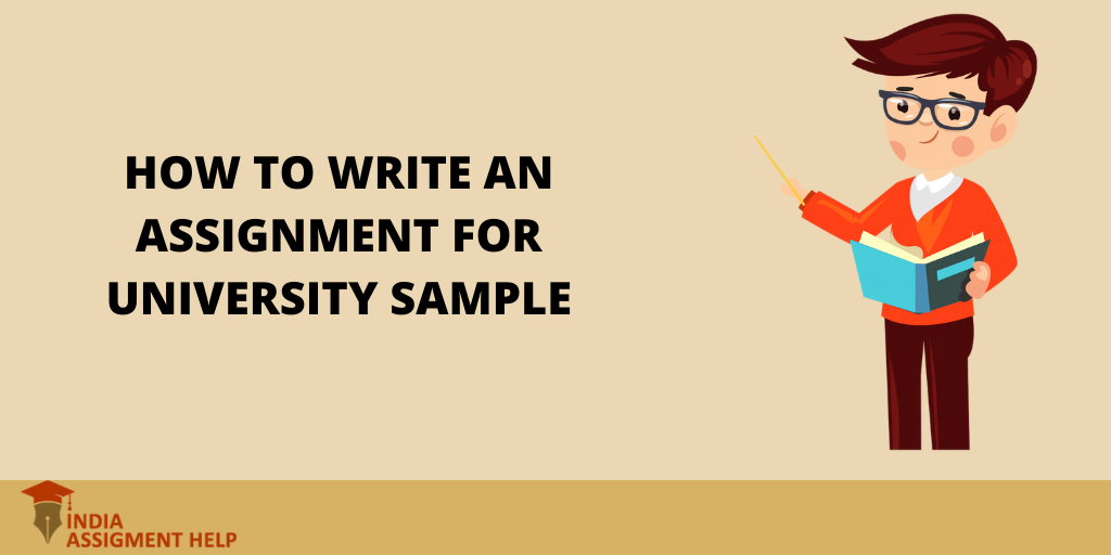 How to Write an Assignment for A University Sample?