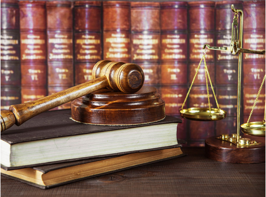 Criminal Law Assignment Experts in India