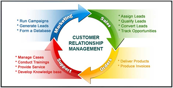 Customer Relationship Management Assignment Experts in India