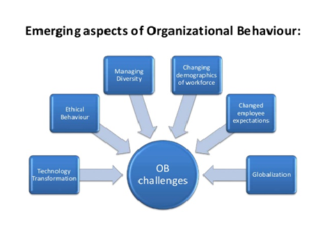 Organization Behaviour Assignment Experts in India