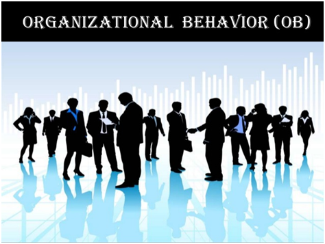 Organizational Behavior Assignment Help in India