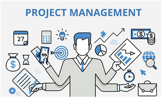 Project Management Assignment Help in India