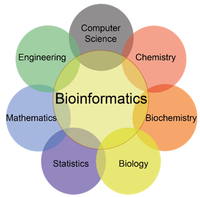 Bioinfomatics Assignment Experts Help in India