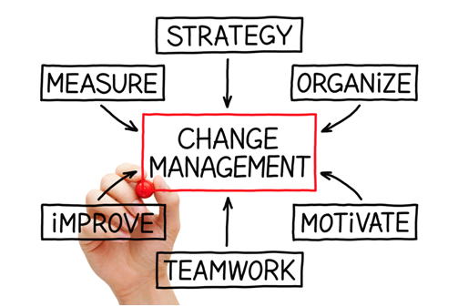 Change Management Assignment Experts in India