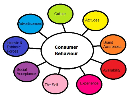 Consumer Behaviour Assignment Help in India