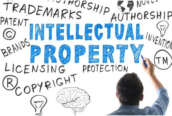 Intellectual Property Law Assignment Writing Experts