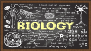 Medicine and Biology Assignment Experts Help in India