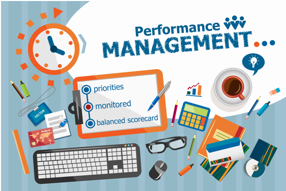 Performance Management Assignment Experts in India