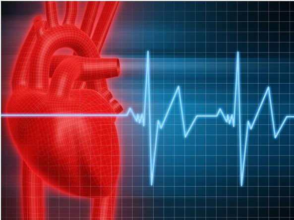 Cardiac Nursing Assignment Experts in India